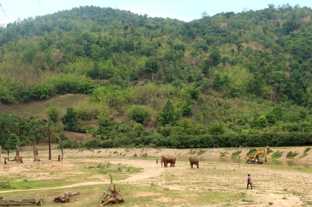 Elephant_nature_park_blogger_travelblog_Thailand_Chiang_mai_25