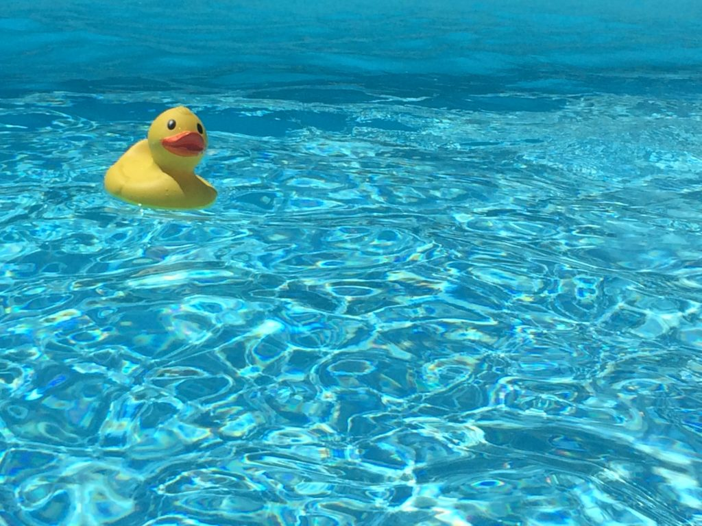 Blogger_france_travel_rooftopantics_Duck_swimmingpool_fun_summer