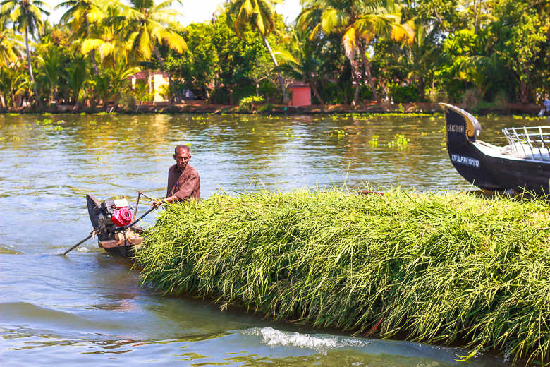 India_houseboat_travel_kerala_budgettravel (2 of 13)