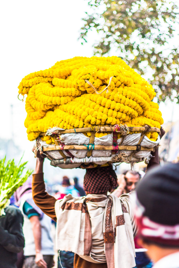 Calcutta_India_traveltips_whattodo_flowermarket_travel (9 of 32)