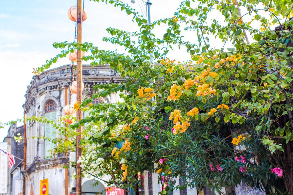 Penang_streetart_maleysia_travel_georgetown (15 of 36)