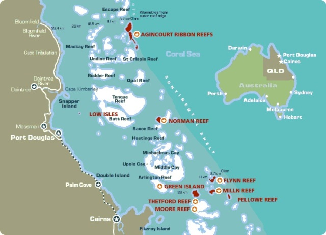 Explore The Great Barrier Reef From Port Douglas With Divers