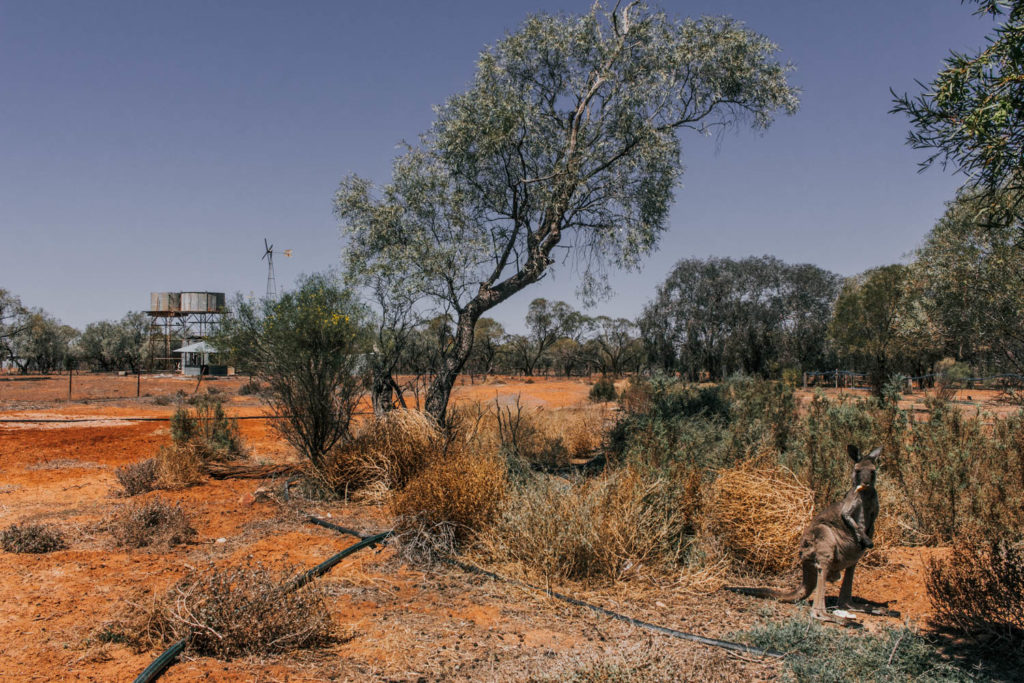 Sydney to Broken Hill Roadtrip