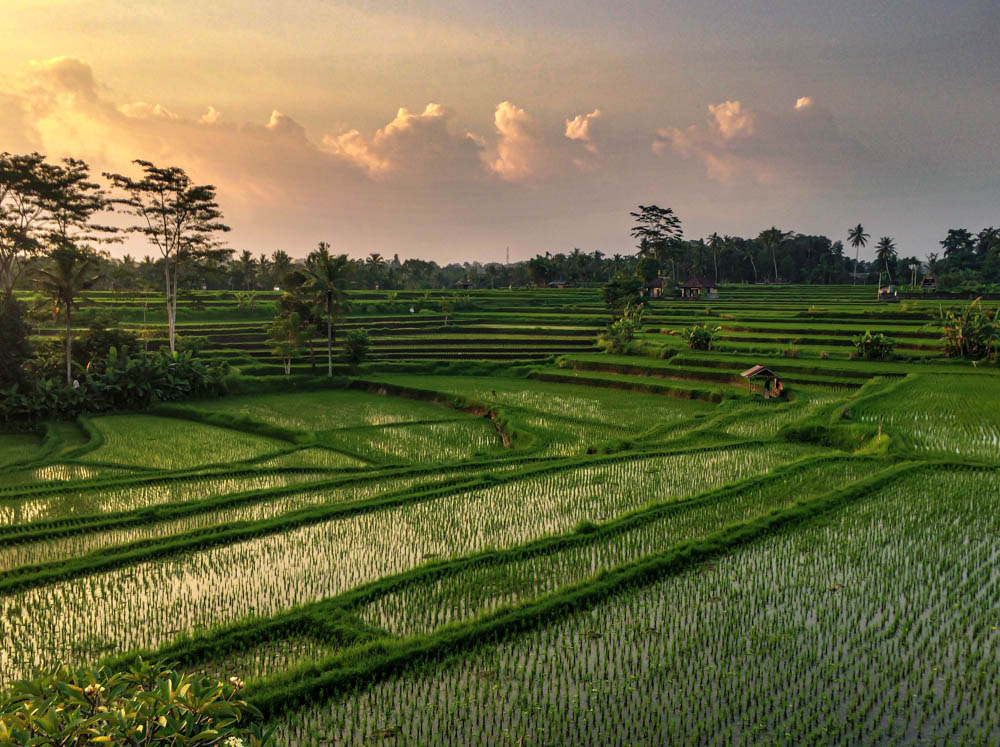 The Ultimate Bali Itinerary 10 Days For All The Must Visits Rooftop Antics
