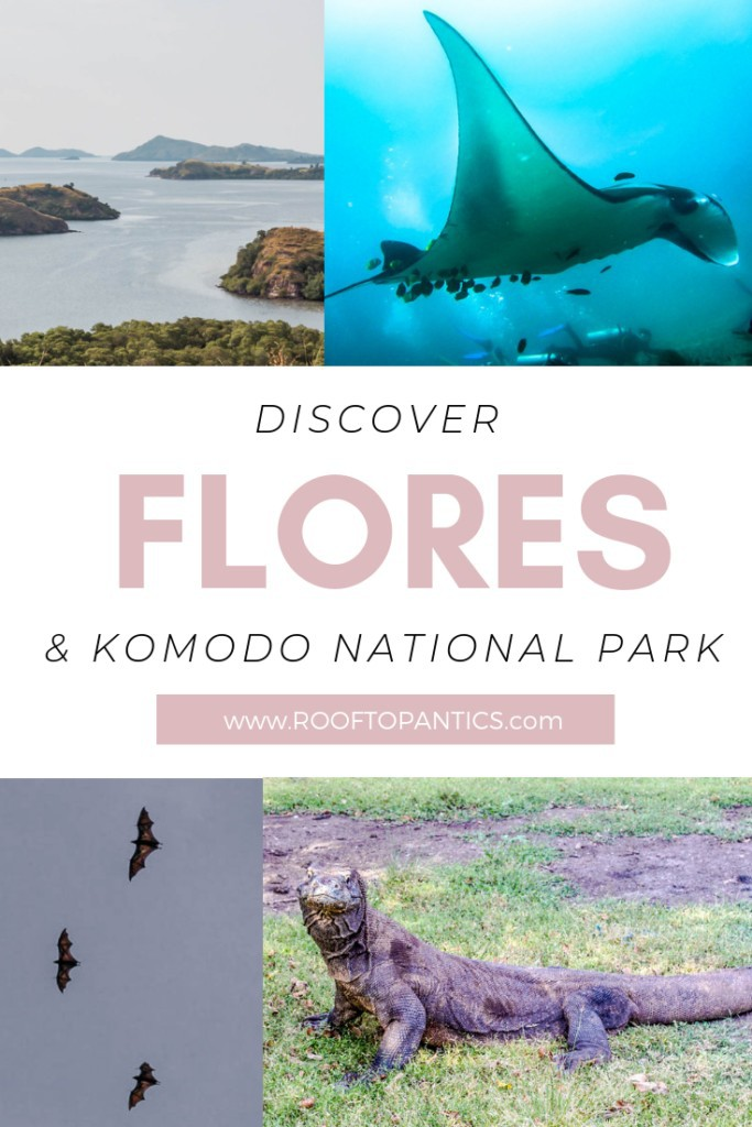 All The activities you can do on Labuan Bajo, Komodo National Park, Flores, Indonesia