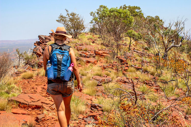 Hiking Mount Bruce, Karijini National Park