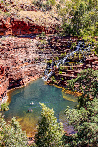 Fern Pool in Dales Gorge in Karijini National Park, karijini gorge