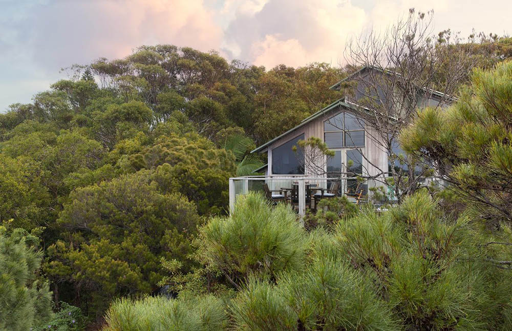 treehouse and treetop accommodation in  Byron Bay, NSW